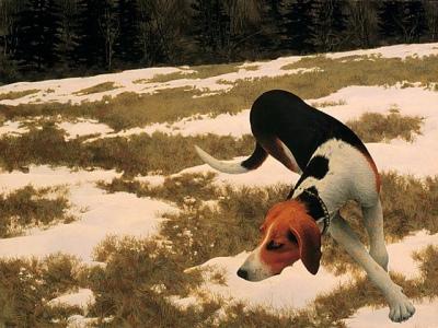 1958 - Alex Colville - Hound in Field