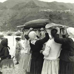 A iazata ru piscispada (Calabria)
