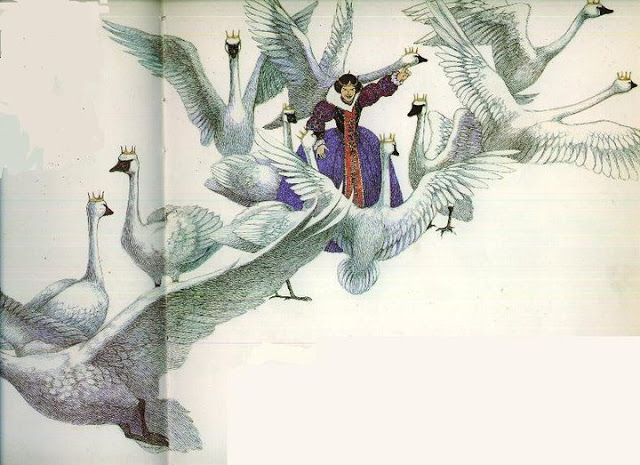 Les Cygnes Sauvages Illustration Susan Jeffers De Paysage En Paysage
