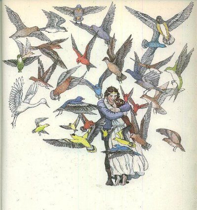 Les Cygnes sauvages - illustration Susan Jeffers