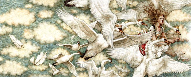 Les Cygnes Sauvages Illustration Yvonne Gilbert De Paysage En