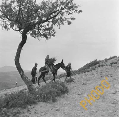Ando Gilardi - Paysans au retour des champs - Basalicata - 1957