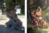 l'olivier d'Agrigente et la lutte de Jacob avec l'Ange de Delacroix