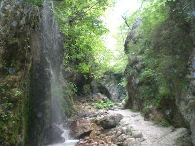 Parc d'Aspromonte