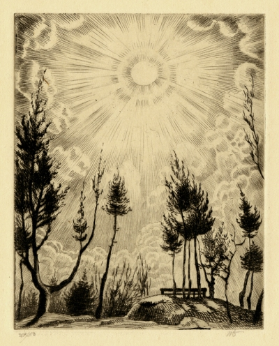 Willi Geiger - Trees reaching toward the sun