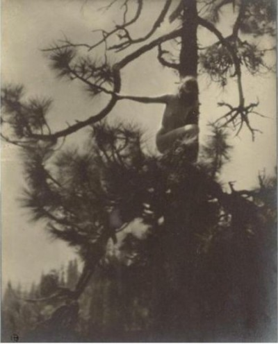 Anne Brigman - The-Dryad - 1905