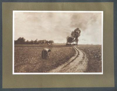 Paysage, 1904 - photographe Edouard Adelot