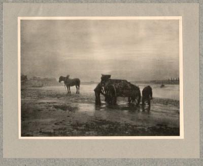 Sur la Grève, 1905 - photographe Charles Job