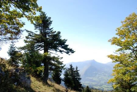 montée au Roc des Bœufs le 5 octobre 2012 à 12h 58 par Enki - DSC_0434