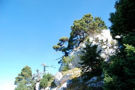 montée au Roc des Bœufs le 5 octobre 2012 à 13h 27 par Enki - DSC_0461