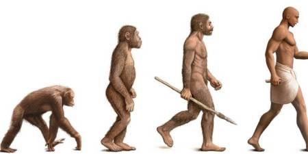 Evolution Männer