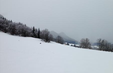 Graphisme d'hiver - col de Leschaux dans les Bauges - photo Enki le 16/02/2014 à 14h 00