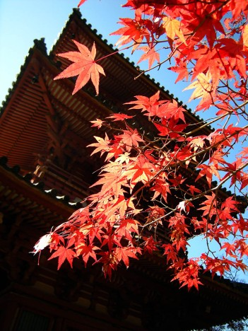 DSCN3313-pagoda