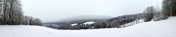 Graphisme d'hiver - col de Leschaux dans les Bauges - photo Enki le 16/02/2014 à 12h 51 (IMG_157)6