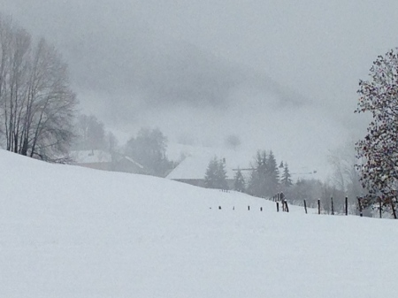 Graphisme d'hiver - col de Leschaux dans les Bauges - photo Enki le 16/02/2014 à 13h 07 (IMG_1604)