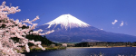 le flanc du Fuji