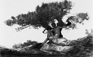 Anne Brigman - Le Chant du Grillon, 1908
