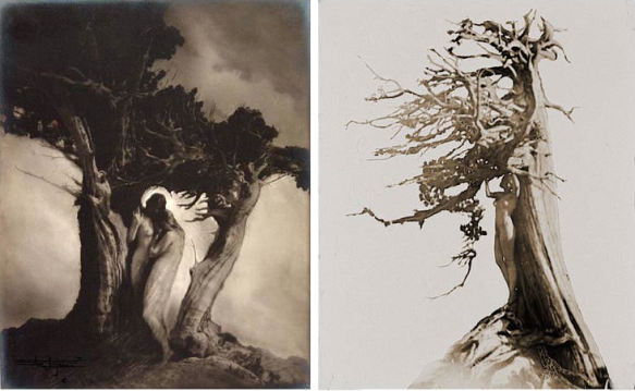 Anne W. Brigman : The Heart of the Storm (1912) et Nude by tree (1915)