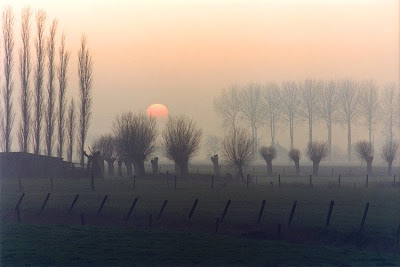 Flandres-wintersunset