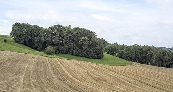 Gustave Roux-Autour de la ferme du poète à Carrouge. (Eddy Mottaz)