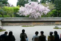 kyoto-ryoanji-2_0