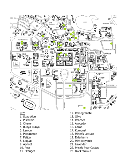 Map of all edible fruit trees on campus