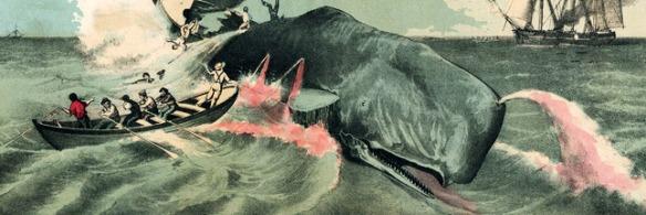 la chasse à la baleine au Japon : C'est assez !