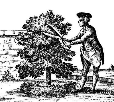 cultiver son jardin de paysage en paysage