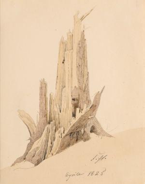 Caspar Friedrich - arbre foudroyé, 1825