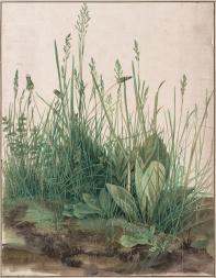 Albrech Dürer - La Grande Touffe d'herbes, 1503 (Google Art Project)
