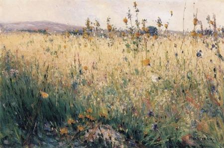 Karl Nordström - champ d'avoine, Lyrön, 1887