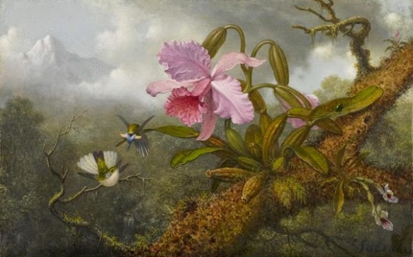 Cattleya Orchid, Two Hummingbirds and a Beetle - 1875-1890 - oil on canvas by Martin Johnson Heade (1819-1904) - via The Athenaeum