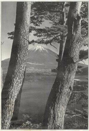 Herbert G. Ponting - le Fuji à travers les pins du lac Motusu, publié par K. Ogawa en 1905