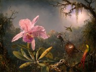 Martin_Johnson_Heade-Cattleya_Orchid_and_Three_Brazilian_Hummingbirds-1
