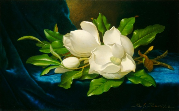 Martin_Johnson_Heade_Giant_Magnolias_on_a_Blue_Velvet_Cloth_NGA