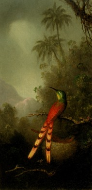 Tropical_Bird_in_a_Mountainous_Landscape
