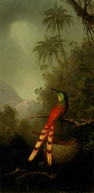 Tropical_Bird_in_a_Mountainous_Landscape
