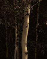 Capture d'écran 2015-10-23 à 18.56.54