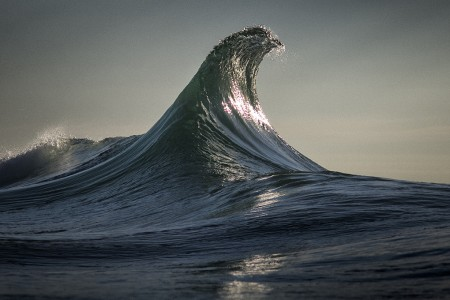 Ray Collins - Eagle