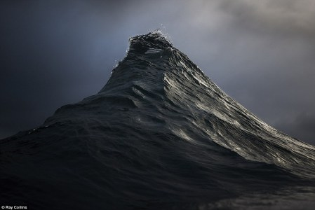 Ray Collins 5