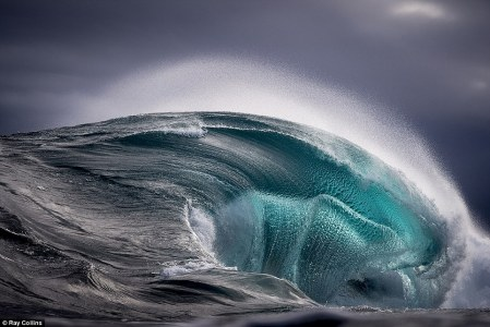 Ray Collins 6