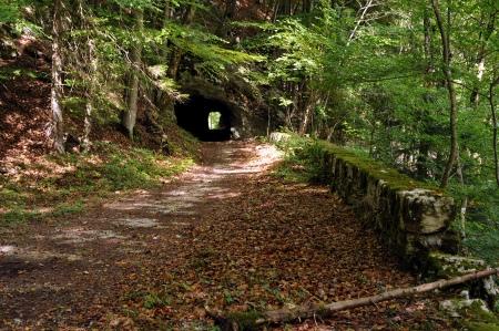 Taubenloch gorge in Biel-Bözingen - Bern, Switzerland. Old road west above the gorge