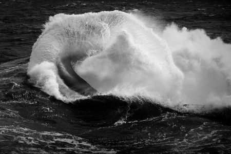 Ray Collins - Warp