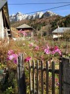 Bellecombe-en-Bauges - hameau de Mont Derrière (IMG_3120)