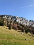 Bellecombe-en-Bauges - hameau de Mont Derrière (IMG_3156)