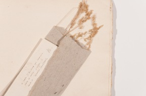 paquet de graminées issu de l'herbier de Rousseau. Bibliothèque publique et universitaire, Neuchâtel : Photo Gaël Osowiecki