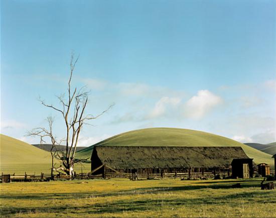 Ansel Adams - Tree, Barn near Livemore, 1950