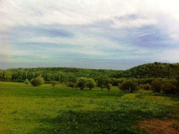 Paysage de la Vallée de Chevreuse près du site de l'abbaye de Port-Royal des Champs