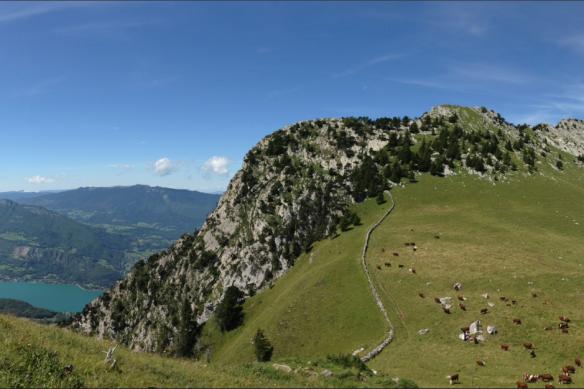 La Roche Murraz (1768 m) et le mur de pierre qui protège l'Aulp Riant