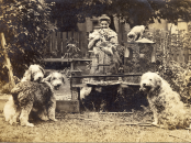 carr-with-her-pets-in-the-garden-of-her-home-on-simcoe-street-in-victoria-1918